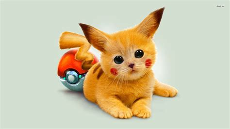anime kitten hd wallpaper 18636 baltana pikachu fond d 233 cran