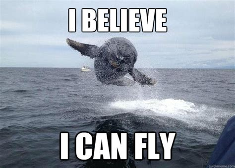 I Believe I Can Fly Meme - switzerland will fly published by thetrendoreborn on day