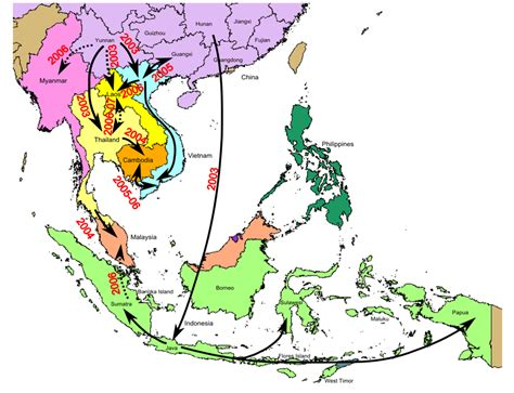 american migration from asia map viruses free text a h5n1 virus evolution in