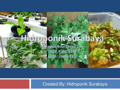 Pupuk Ab Mix Surabaya 0822 4506 5392 t sel jual nutrisi hidroponik ab mix
