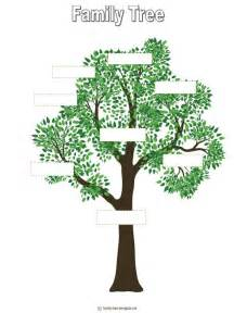 picture of family tree template tree outline printable free printable family tree