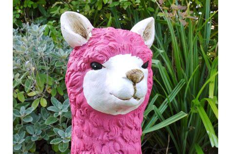 llama pink