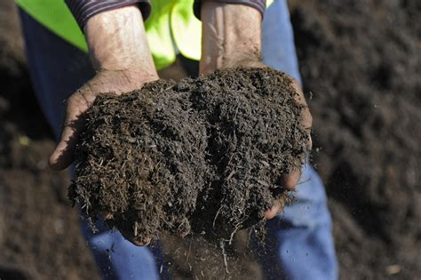 Where To Buy Top Soil And Compost In Bulk Buying Soil For Vegetable Garden