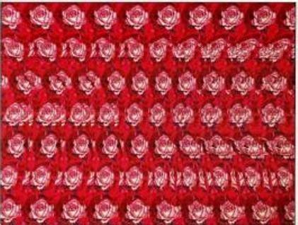 cuadros en 3d ocultos estereogramas pcexpertos