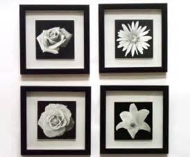 Black And White Wall Decor by White Floral Framed Black And White Novelty