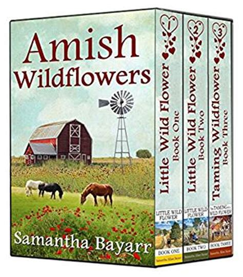 amish amish books amish wildflowers amish collection