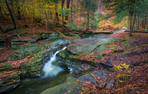 wallpaper autumn forest river waterfall pa pennsylvania ricketts glen state park sullivan