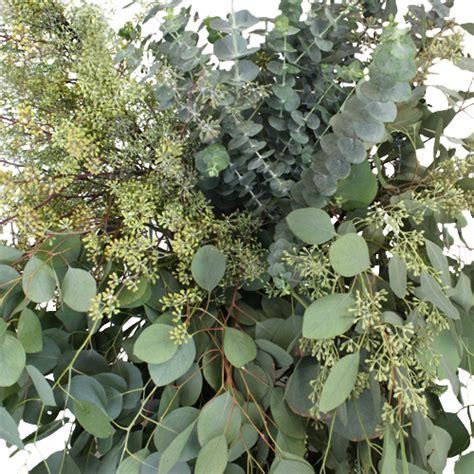 Diy Flower Vases Eucalyptus Wedding Diy Greenery Box
