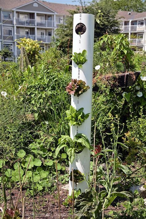 Vertical Vegetable Garden Planters 42 Best Images About Vertical Gardens On