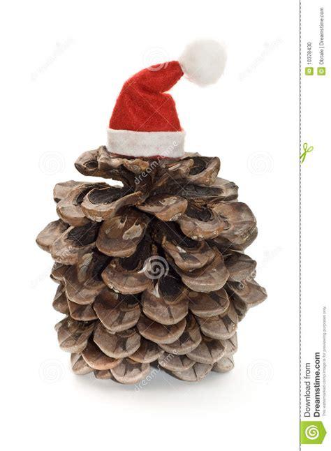 pine cone with santa hat stock photo image 10378430