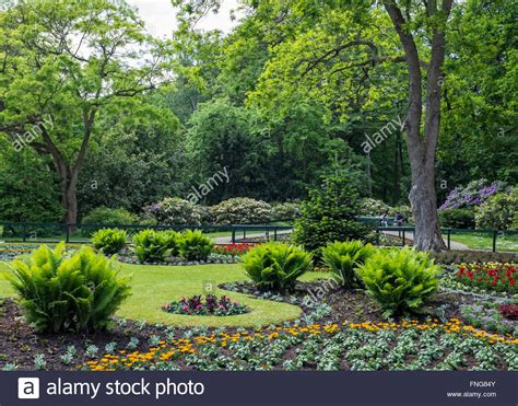 plants for formal gardens formal flower garden with bedding plants in tiergarten
