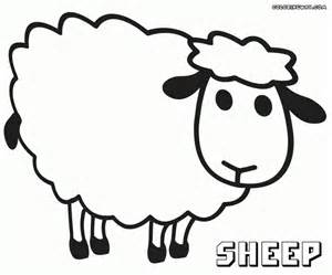 coloring page of a sheep gallery