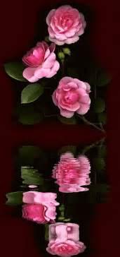 imagenes de flores virtuales flores animadas para regalar