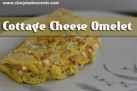 cottage cheese omelette cottage cheese omelet humorous homemaking