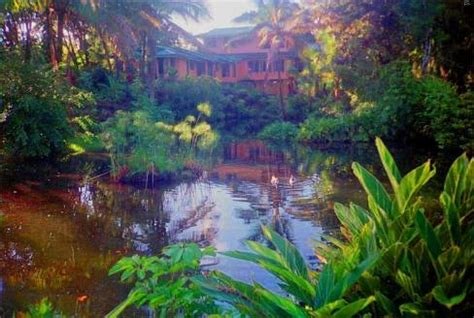 hilo bed and breakfast at the beach with friends bed and breakfast hilo hawaii hilo b b