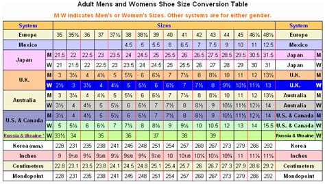 shoe size chart hugo boss new hugo boss blue white t shirt shoes suit flip flops ebay