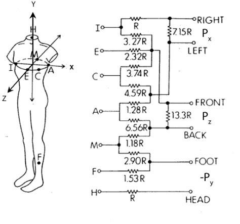 pediatric lead placement diagram 5 best images of 12 lead ekg placement diagram 5 lead