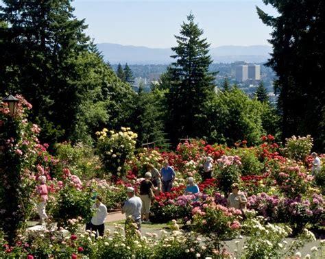portland rose garden travel portland travel portland