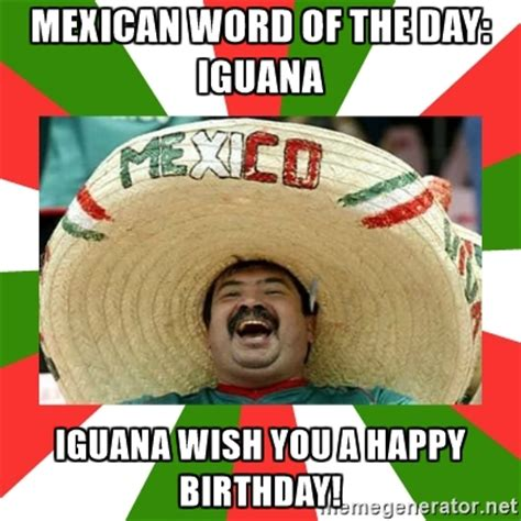 Funny Memes Of The Day - sombrero mexican mexican word of the day iguana iguana