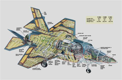 airplane cross section aircraft cross sections and cutaways from w3 by trivto on