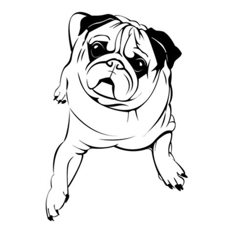 pug vector free pug symbol vector image this is a class project for crea flickr