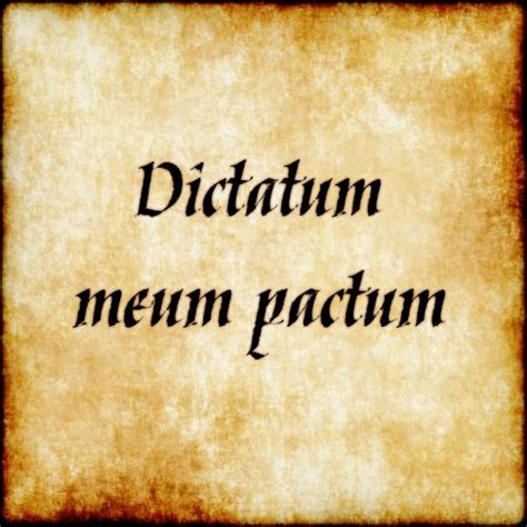 latin dictionary tattoo 11 best positive latin quotes images on pinterest latin