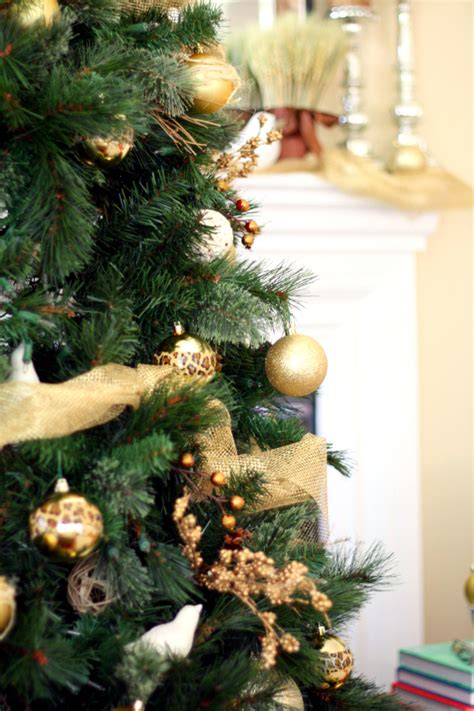 choose the perfect christmas tree fresh green pine tips