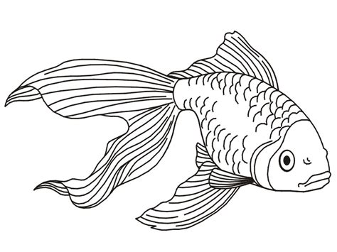 Beautiful Christmas Bowls #10: Printable-Goldfish-Coloring-Pages.jpg