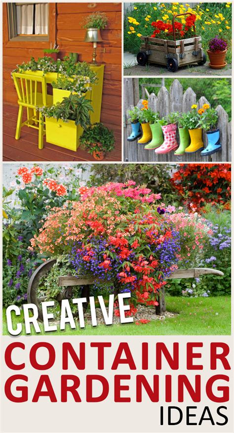 creative container gardening ideas 9 container alternatives for potted plants page 7 of 10