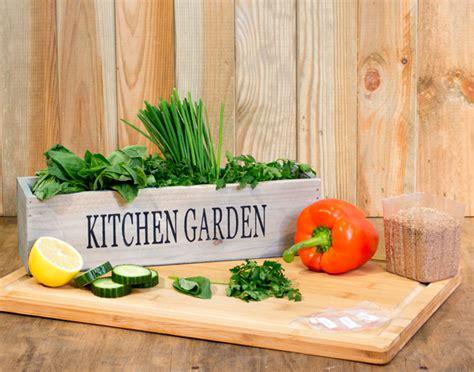 crea il tuo giardino crea il tuo giardino cucina 3 davanzale fioriere con i