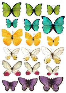 butterfly prints free best 25 printable butterfly ideas on