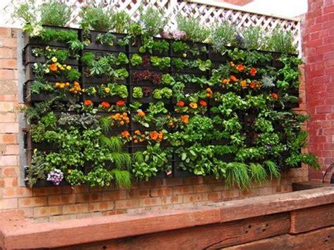 crea il tuo giardino crea il tuo giardino verticale idee giardinieri