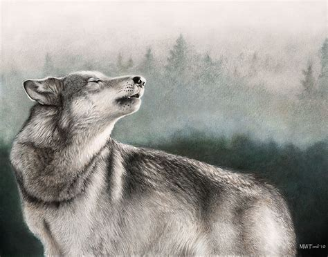 wallpaper google chrome wolf wolf wallpaper theme with 10 backgrounds