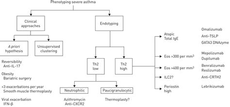Keyvan Ravakhah Md Mba by Modified Asthma Predictive Index Pdf Predictive Solutions