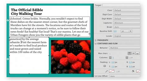 blink layout engine download what s new in adobe flash professional cs5 news