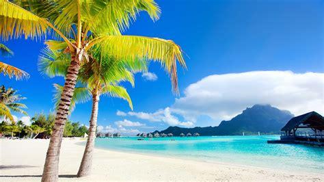 tropical heavenly beach  bora bora island extreme