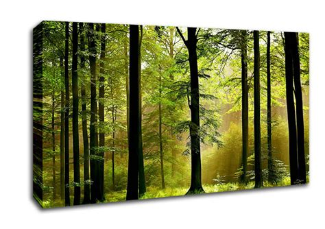 Wall Size Murals forest mist forest wide panel canvas wide canvas