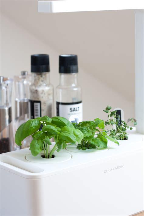 smart herb garden decordots in my kitchen a smart herb garden