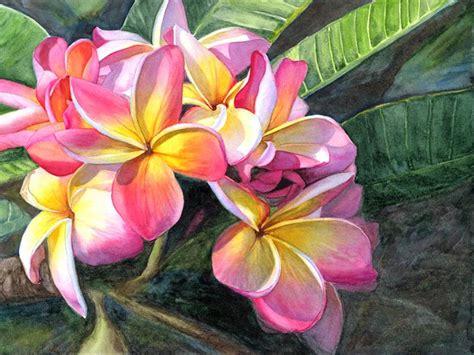 plumeria painting plumeria paintings marcia minnichhofer kauai art hawaiian art