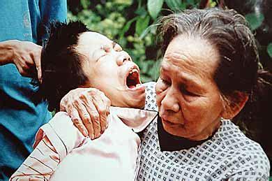 dioxina crimen contra el pueblo vietnamita por carlos g