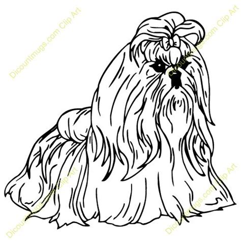 shih tzu coloring page google search coloring pages