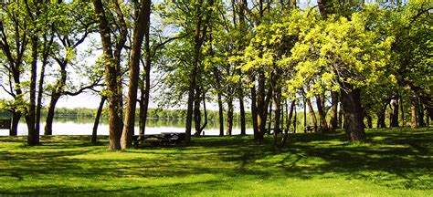 Ottertail Lake Cabins For Sale by Ottertail Mn Lake Homes Cabins For Sale Lakeplace
