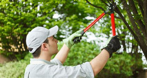 Gardening Services Gardeners Melbourne Gardening Services In Melbourne