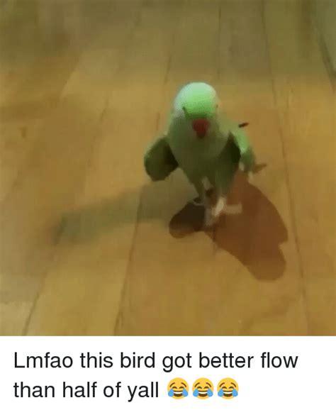 better flow lmfao this bird got better flow than half of yall