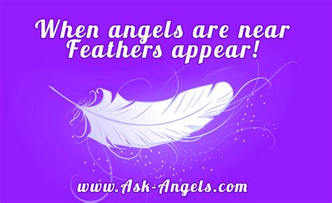 color purple quotes heaven last always feathers what is the meaning of finding feathers