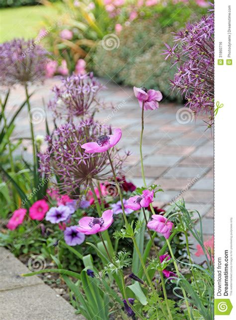 country cottage garden plants country cottage garden flowers royalty free