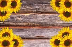 Rustic Wooden Wall Decor Wooden Lumber Textured Background With Sunflowers