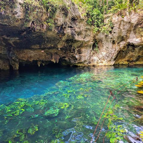 Find In Mexico Where To Find The Best Cenotes In Mexico Jetsetter Jenn