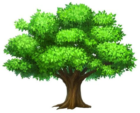 images tree best 25 tree clipart ideas on