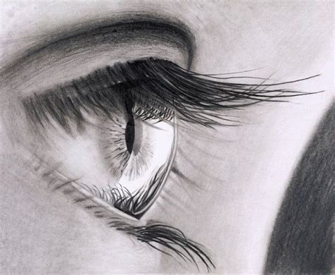 pencil drawing images original pencil drawing of an eye framed by